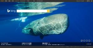 Bing0115