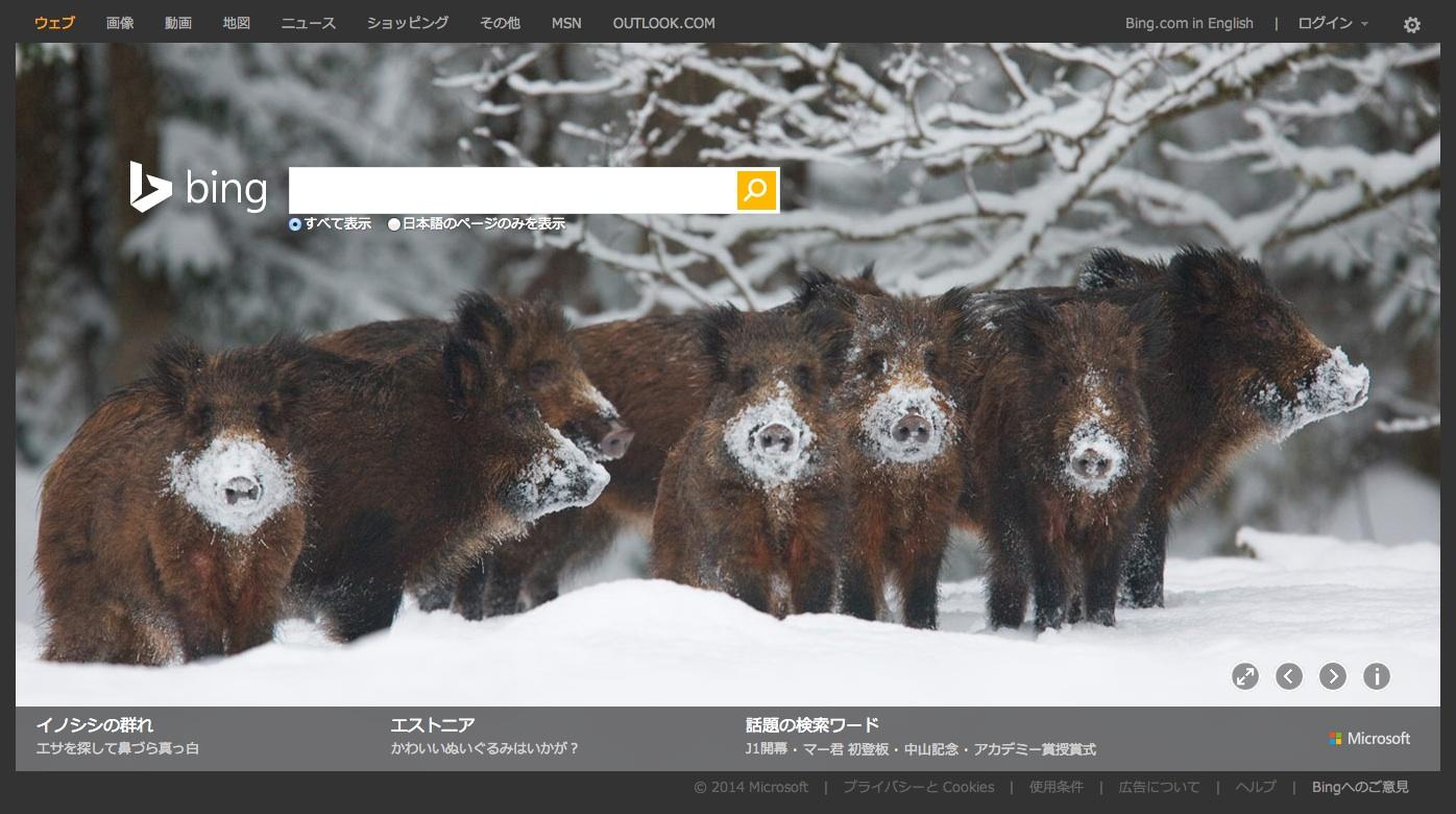 浅田真央選手やイノシシの群れなど、先週のBing(2014/2/24~2014/3/2)背景画像まとめ