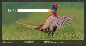 Bing1029