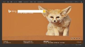 Bing1125