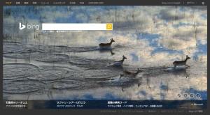 Bing1208
