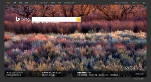 Bing1215