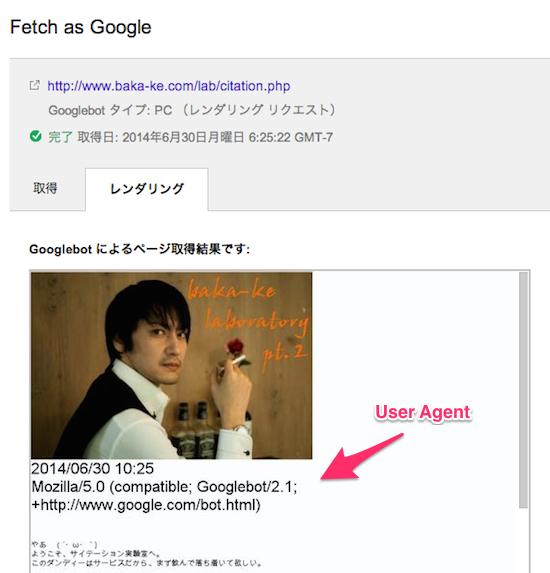 fetch-as-google-pc