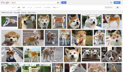google-akita
