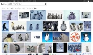 koutei-penguin